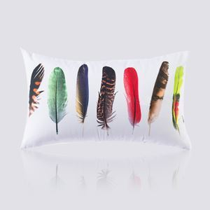 (Entrepôt UE) Moderne nordique Ultra-doux velours colore Motif de plume coussin oreiller canapé