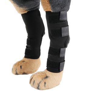Genouillères pour chien protection d'articulation