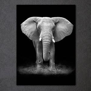 Tableau  sans cadre éléphant 30*45cm