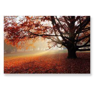 Tableau sans cadre feuilles tombées 30*45cm