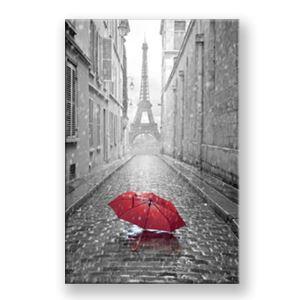 Tableau sans cadre parapluie 30*45cm