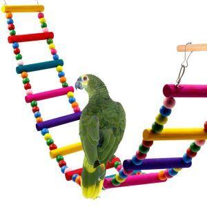 Echelle rotative d'escalade en bois 12 étages coloré pour perroquet