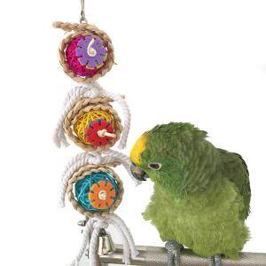 Boule en rotin perroquet jouet mordillant pour animaux de compagnie perroquet