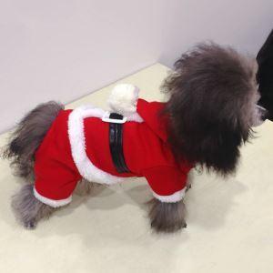 Robe chien Noël rouge décoration bon design