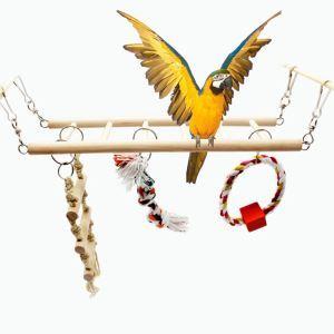 Balançoire en bois plate-forme jouets de morsure pour perroquet