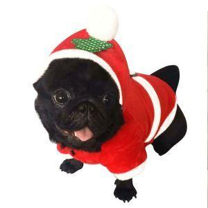 Robe de Noël pour petit chien