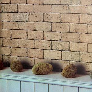 Vénus pays carreau brique Wallpaper