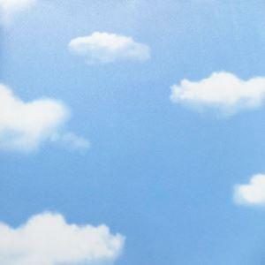 Vénus plein ciel et nuage papier peint