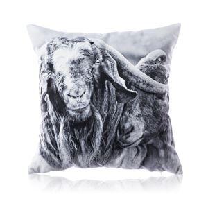 Taie d'oreiller velours noir et blanc Motif de chèvre