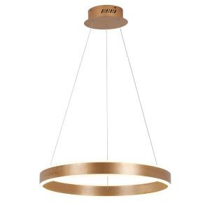 Suspension LED brossé cercle d'àr design luminaire pour salle restaurant bar style moderne