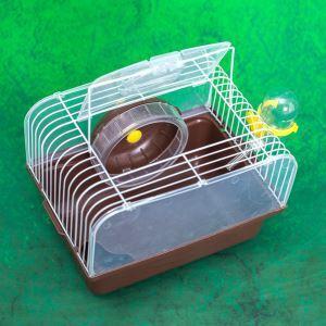 Cage de hamster café