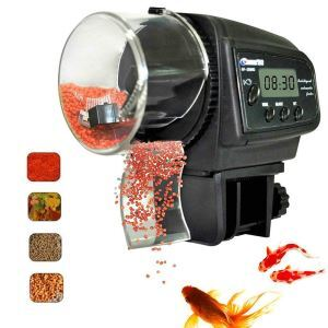Mangeoire à poisson automatique réservoir minuteur quantification