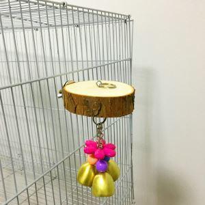 Plate-forme en bois petites clochettes de couleur pour perroquet