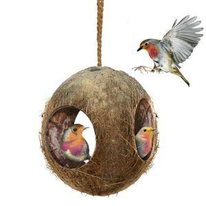 Nid d'oiseau coquille de noix de coco jouet grotte pour perroquet hamster