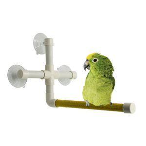 Plate-forme de douche pour perroquet