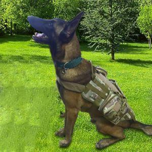 Gilet de dressage avec sac en nylon 1000D extérieur pour chien grand