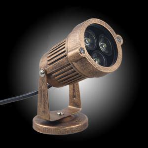 Projecteur à fixer extérieur LED intégrée 5 W